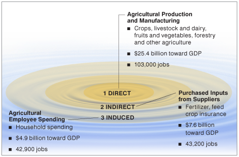 Figure 1: Economic Ripple Effect of Indiana Agriculture